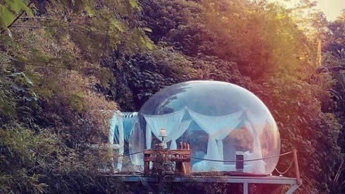 Alien Bubble Bali
